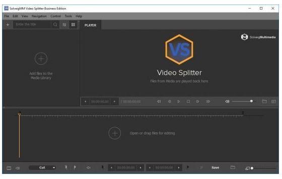 SolveigMM Video Splitter Business