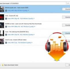 DLNow-Video-Downloader